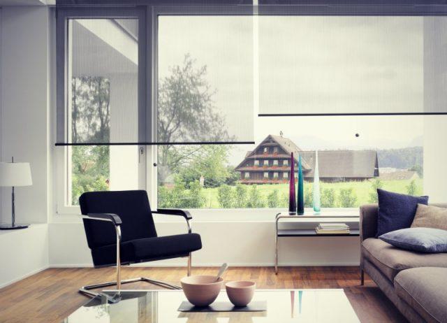 Прозрачные рулонные шторы для гостиной